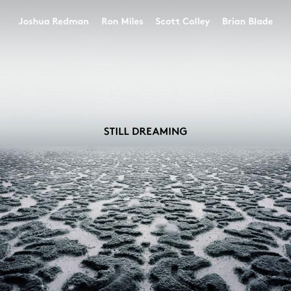 Still Dreaming (feat. Ron Miles, Scott Colley & Brian Blade) Digital Album FLAC