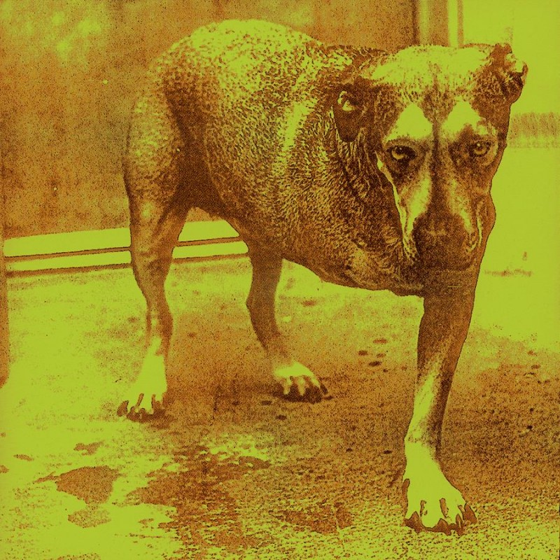 Alice In Chains CD