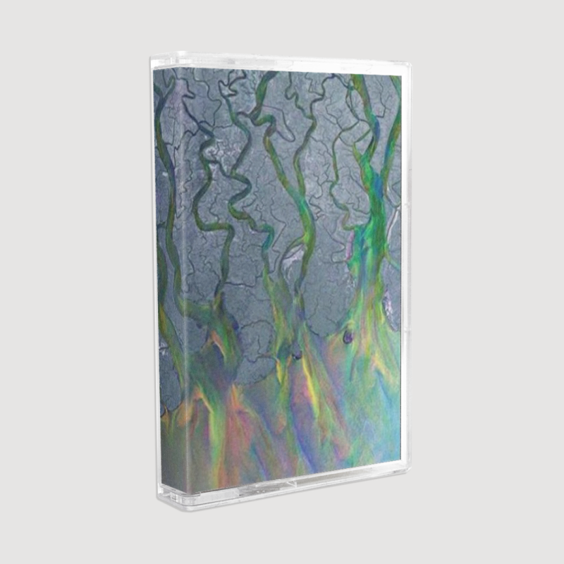 An Awesome Wave Cassette