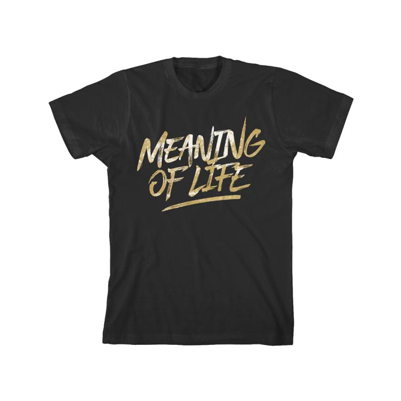 Gold Swipe T-Shirt