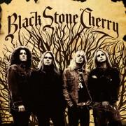 Black Stone Cherry Digital MP3 Album